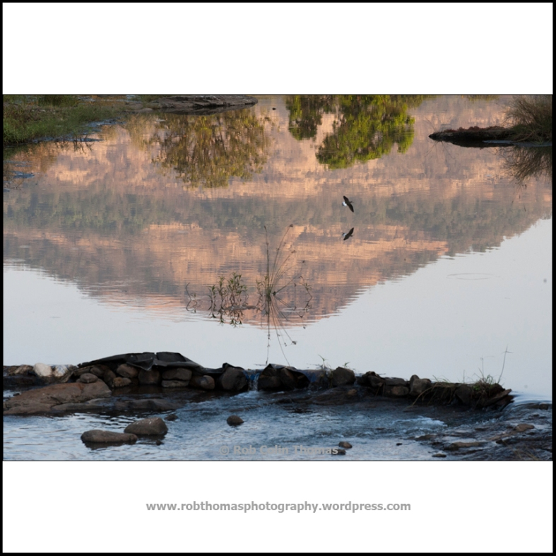 reflections_02
