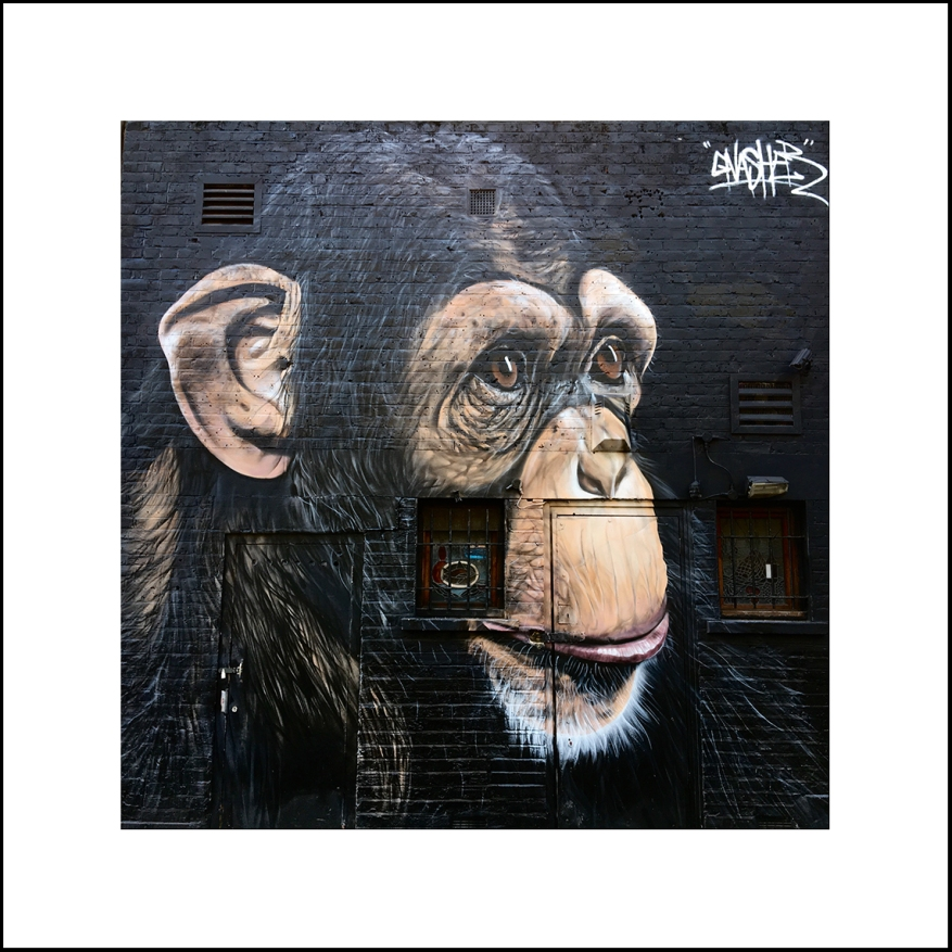 Street_Art-06